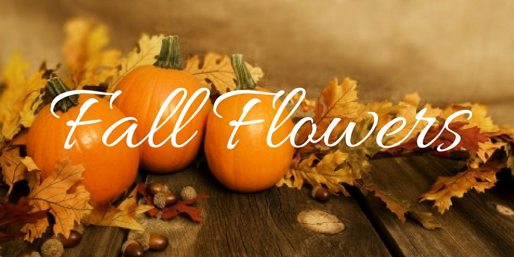 fall-arrangements-thanksgiving-centerpieces-for-delivery-houston-pasadena-tx.jpg